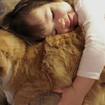 Дети и домашние питомцы: польза и вред
