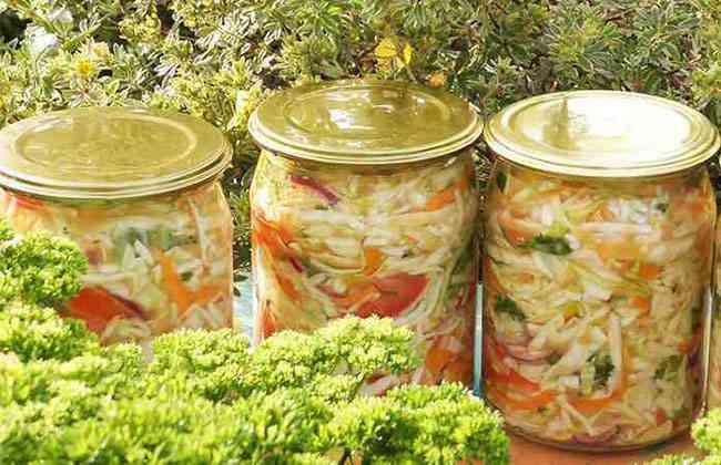 Рецепты салатов с капустой на зиму